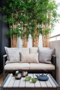 como integrar una terraza sencilla a una casa de infonavit