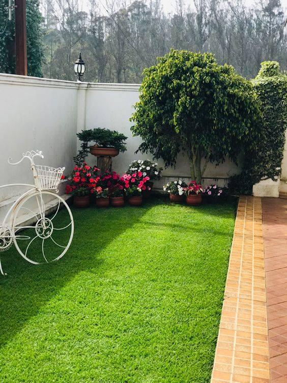 Diseño de jardines con plantas