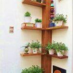 Repisas para plantas en el jardín