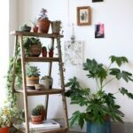 Escaleras como repisas para jardín